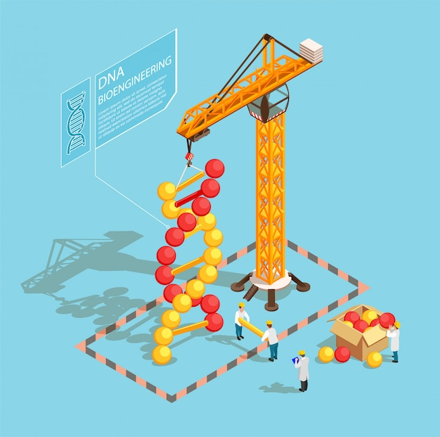 Gmo isometric composition