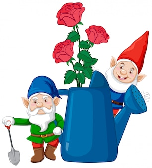 Gnomes with rose in watering can cartoon style on white background