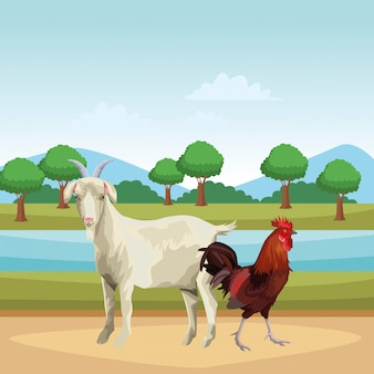 Goat and rooster