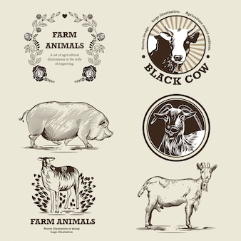 Goat, sheep, pig, cow. illustration in the style of engraving.