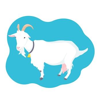 목에 뿔, 젖통, 종을 가진 염소. 농장 낙농 동물.