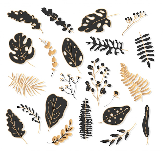Gold black tropical leaf botanical set.