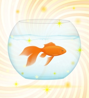 Gold fish in a transparent aquarium.