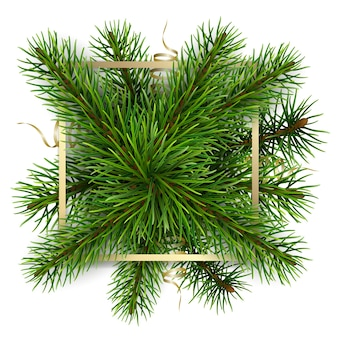 Gold frame on a background of fir branches. realistic  element for decorate greeting card or label.