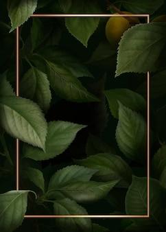 Gold frame on briançon apricot background