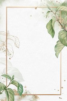 Cornice oro su briançon albicocca