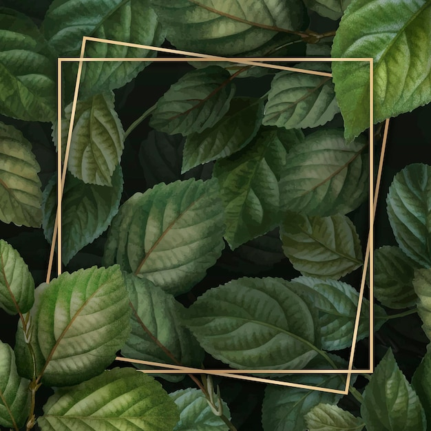 葉の背景にゴールドフレーム