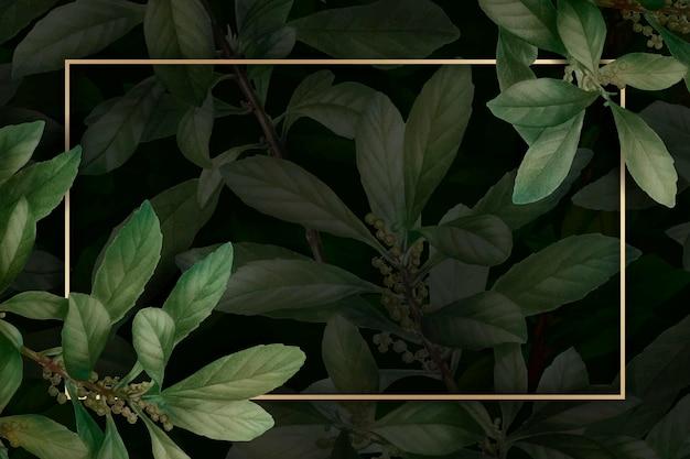 Золотая рамка на листве узор фона вектор шаблон