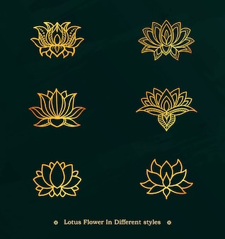 Gold line lotus flower design set