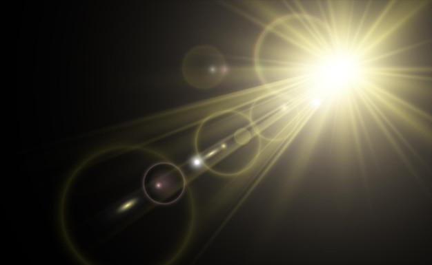 ゴールドの輝き、明るい光のボケ味。