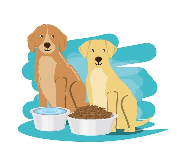 黄金とラブラドールの犬