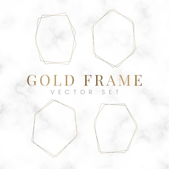 Golden blank hexagon frame vector set