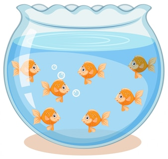 タンク内の黄金の魚