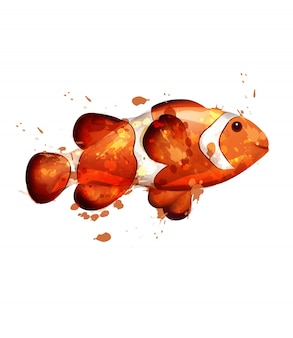 Golden fish watercolor