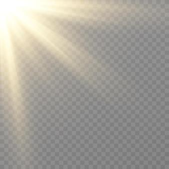 黄金の光。太陽の光。