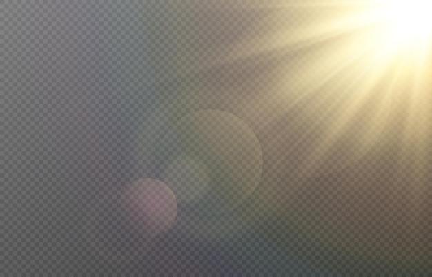 まぶしさのある黄金の光。太陽、太陽光線、夜明け、太陽からのまぶしさ
