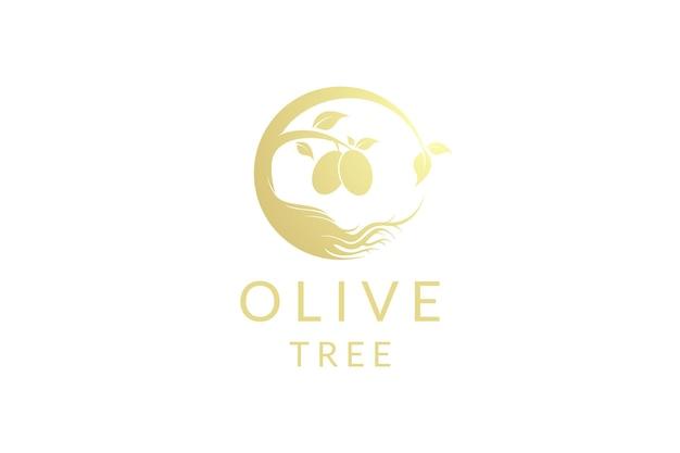 황금 올리브 오일 나무 로고 디자인 벡터
