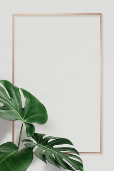 Golden rectangle monstera leaves frame design resource