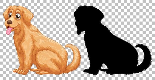 ゴールデンレトリバー犬とそのシルエット