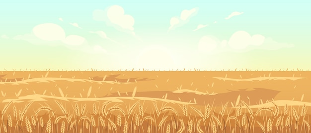 Golden wheat field flat color vector illustration. harvest season 2d cartoon landscape. sunrise in countryside. agricultural area at dawn. morning view of meadow with cereal plants