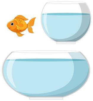 金魚と白い背景の上の水で2つのボウル