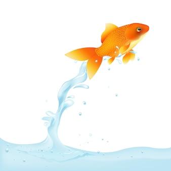 金魚が水から跳躍、イラスト