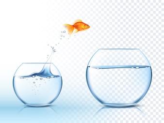 ゴールディッシュは水のボウルの穴を飛び出します