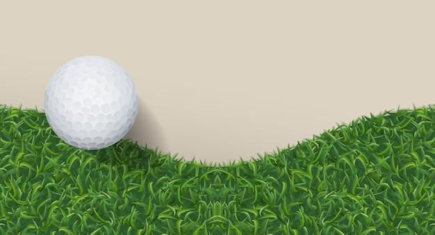 Мяч для гольфа и зеленая трава.