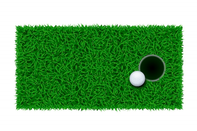 Golf green grass
