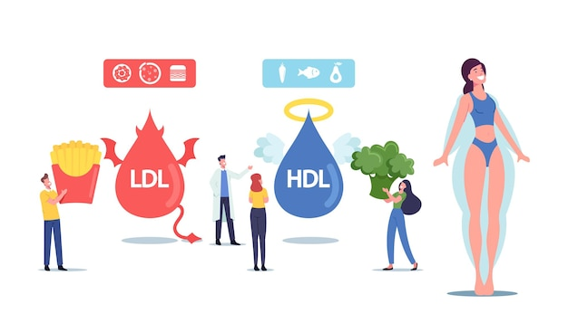 Good and bad cholesterol concept. tiny male and female characters with products contain hdl and ldl fats as reason of obesity and diseases. devil and angel lipids. cartoon people vector illustration