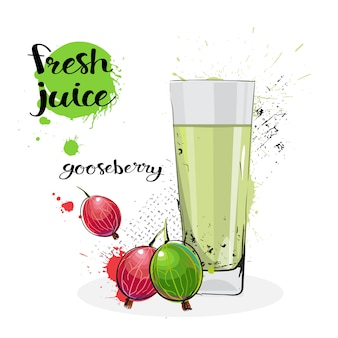 Gooseberry juice fresh hand drawn watercolor fruit and glass on white background