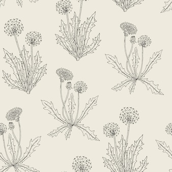 Gorgeous contour botanical seamless pattern with blooming dandelion plants, flowers, seed heads and leaves hand drawn in retro style.