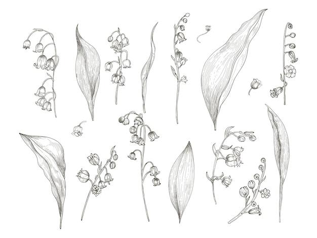 은방울꽃 부품의 화려한 그림