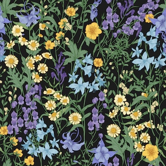 Gorgeous floral pattern with wild blooming flowers and meadow flowering plants on black background.