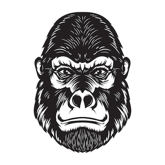 Gorilla ape head illustration on white background.  elements for poster, emblem, sign.  image