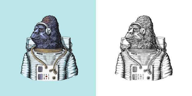 Gorilla astronaut character monkey spaceman cosmonaut fashionable animal vitorian gentleman in a
