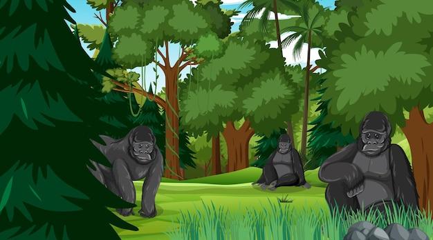 많은 나무가 있는 숲이나 열대우림 장면의 고릴라 가족
