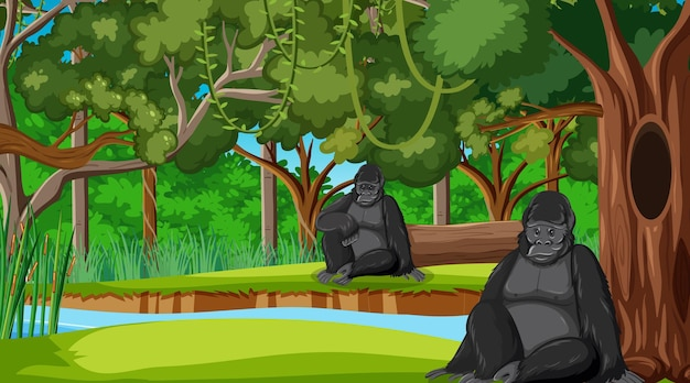 Gorilla in forest or rainforest scene with many trees