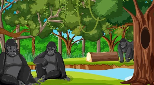 많은 나무가 있는 숲이나 열대우림 장면의 고릴라 그룹