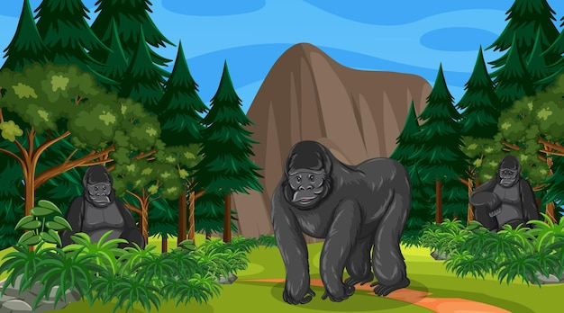 Gorilla group lives in forest or rainforest scene with many trees
