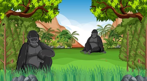 Горилла в лесу или сцена тропического леса с множеством деревьев