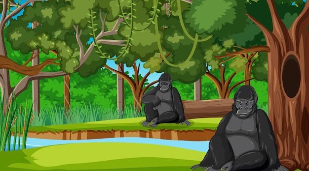 많은 나무가 있는 숲이나 열대우림 장면의 고릴라