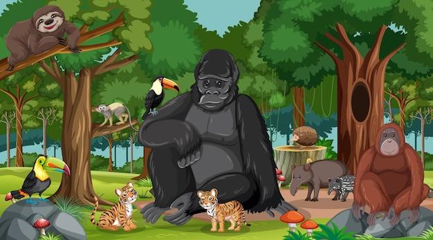 Горилла с другими дикими животными в лесу или тропическом лесу