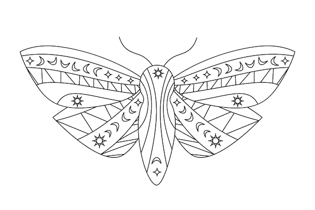 Gothic moth silhouette in outline style. beauty night butterfly