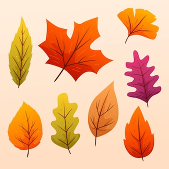 Gradient autumn leaves collection