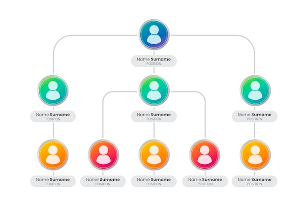 グラデーション組織図のインフォグラフィック