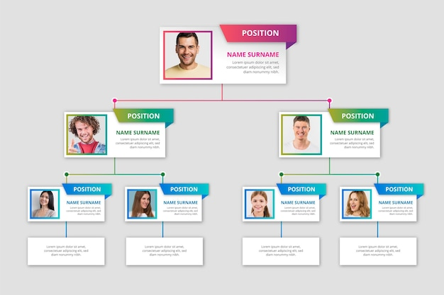 Gradient organizational chart with photo