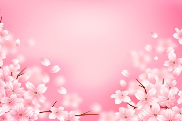 Gradient sakura flower copy space background
