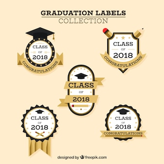 Graduation label collection with flat design