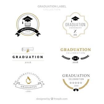 Collezione di etichette di laurea in stile piatto